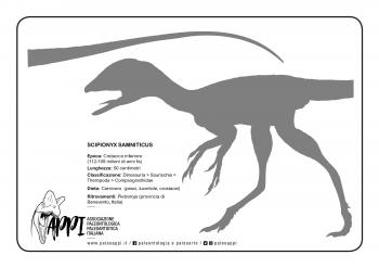 Scipionyx_sagoma