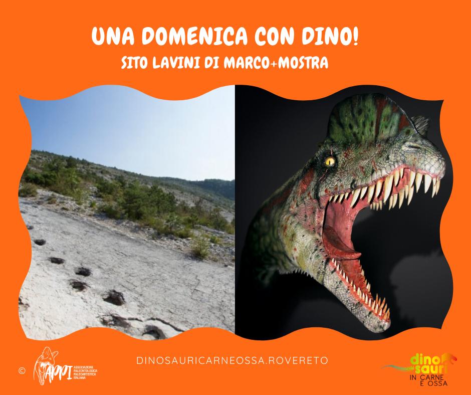 Una Domenica con Dino